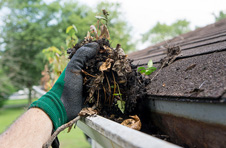 Gutter Cleaning Chichester West Sussex