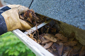Gutter Cleaning Wrexham Wales