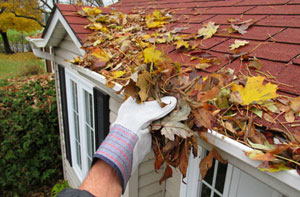 Gutter Clearance Ferndown UK