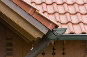 Gutter Maintenance Near Me Ferndown