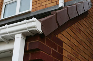 Gutter Maintenance Near Me Darlington